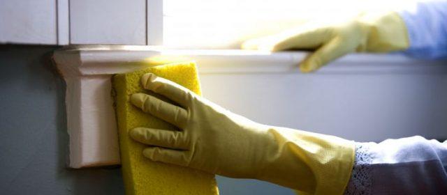Cinq astuces faciles pour vous aider à nettoyer les vitres